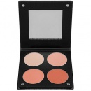 Salmon Blush Palette